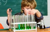 Science Concept. Wunderkind Experimenting With Chemistry. Boy Test Tubes Colorful Liquids Chemistry  poster