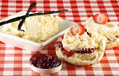 picture of devonshire  - split strawberry cream scone with cream and jam - JPG