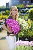 stock photo of flower pot  - Pretty blond woman standing in gardencenter with her arms filled with flower pots - JPG