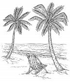Sketch Palm Tree Landscape. Tropical Palm Beach, Exotic Trees And Sea Waves. Vintage Hand Drawing Ve poster