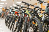 Rows of mountain bicycles in sports shop, nobody poster