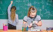 Chemistry Classes. Educational Experiment. Girls Classmates Study Chemistry. Microscope Test Tubes C poster