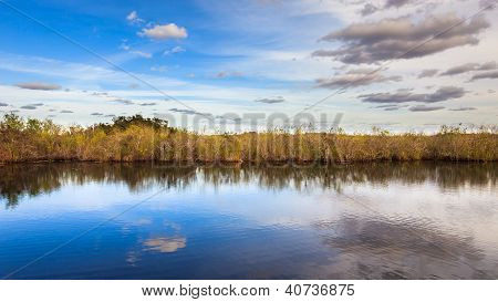 Amazing Everglades Panorama