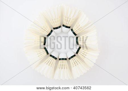 Circle Of Shuttlecock