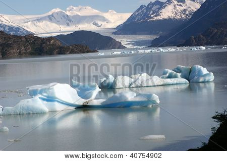 Icebergs at Lago Grey