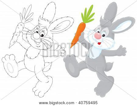 Bunny with a carrot