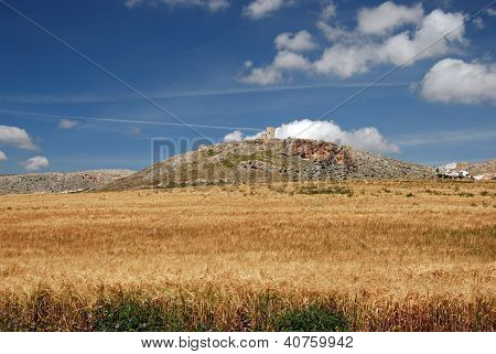 Wheat field and castle, Teba, Andalusia, Spain.