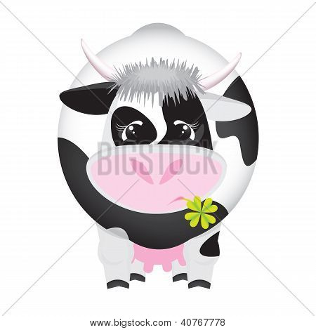 Cute black and white cow with a four-leaf clover in the mouth
