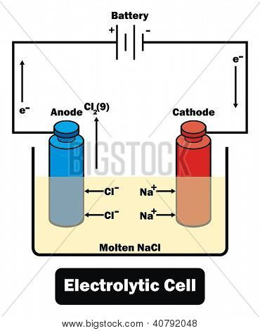 Vector - Electrolytic Cell
