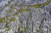 image of crevasse  - Many cracks and crevasses in rock wall covered with liechens - JPG