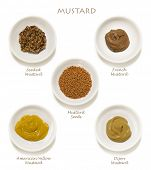 Collection of mustards, isolated on white.  Includes wholegrain, Dijon, American yellow, French, and