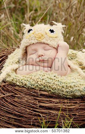 Baby hoot