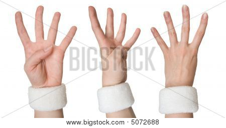 Woman Hand Showing Four From Three Sides (set)