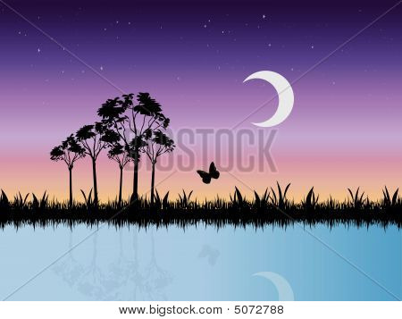 Starry Night Scene In Swamp Vector