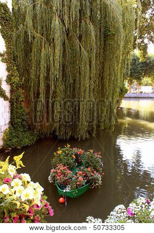 River In Flowers