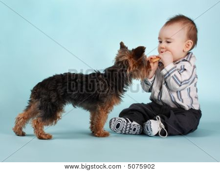 Baby Boy And Dog