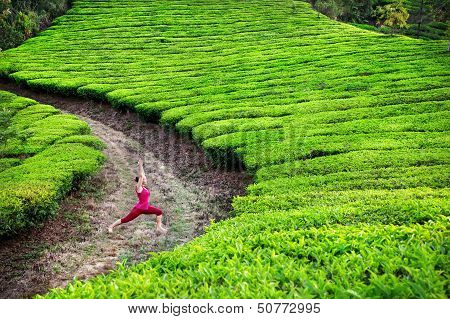 Yoga Warrior Pose In Tea Plantations