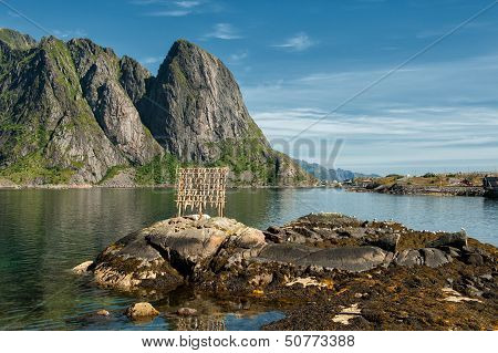 Stockfish drying at Lofoten
