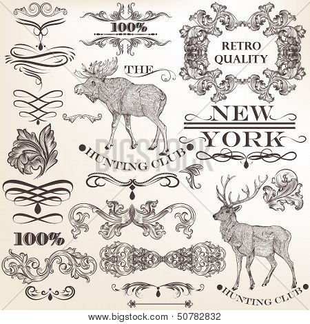 Set Of Vector Vintage Decorative Elements For Design