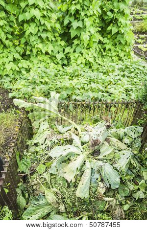 Vegetable Compost Bin