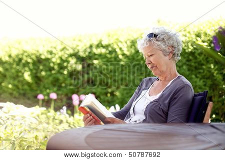 Senior Woman Reading A Book