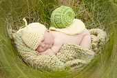 stock photo of slug  - Sleeping baby wearing a snail costume - JPG