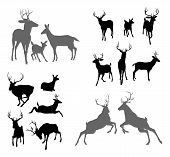 stock photo of deer family  - A set of deer silhouettes including fawn doe bucks and stags in various poses - JPG