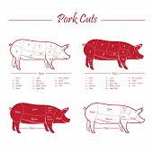 pic of veal meat  - Pork meat cuts scheme - JPG