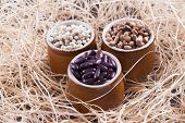 pic of pinto bean  - Close up photo of a beans in clay cup  - JPG