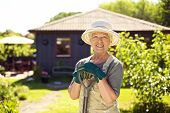 stock photo of shovel  - Portrait of cheerful senior woman with gardening tools outdoors - JPG