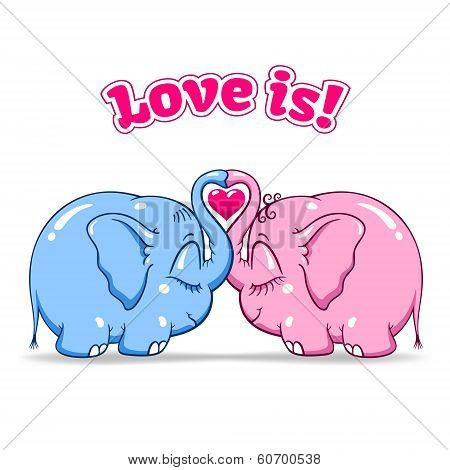 baby elephant in love on white