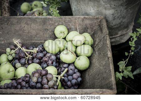 Rustic Fruit