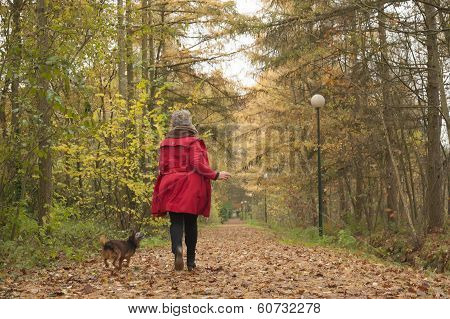 Running With The Dog In The Forest