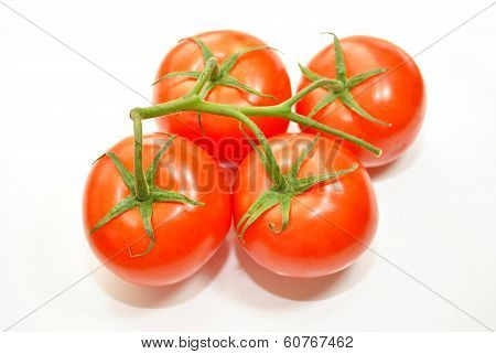 Four Red Tomatoes on the Vine