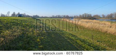 Sunlit dike along a ditch in winter