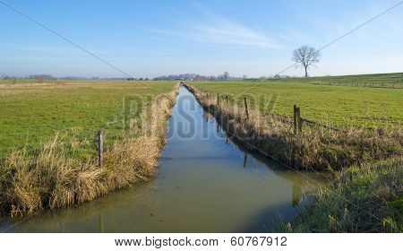 Canals through meadows in winter