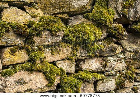 Dry masonry stonewall with moss