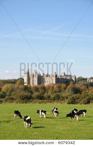 Vista del castillo de Arundel
