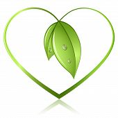 picture of heart shape  - Green sprouts in shape of heart isolated on white background - JPG