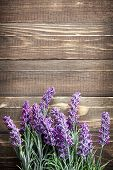 image of lavender plant  - Lavender flowers on a vintage wooden background - JPG