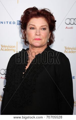 LOS ANGELES - AUG 23:  Kate Mulgrew at the Television Academy's Perfomers Nominee Reception at Pacific Design Center on August 23, 2014 in West Hollywood, CA