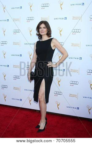 LOS ANGELES - AUG 23:  Betsy Brandt at the Television Academy's Perfomers Nominee Reception at Pacific Design Center on August 23, 2014 in West Hollywood, CA