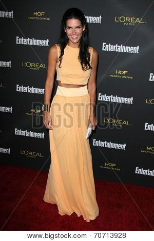 LOS ANGELES - AUG 23:  Angie Harmon at the 2014 Entertainment Weekly Pre-Emmy Party at Fig & Olive on August 23, 2014 in West Hollywood, CA