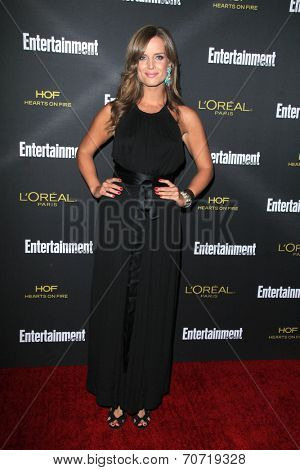 LOS ANGELES - AUG 23:  Brooke D'Orsay at the 2014 Entertainment Weekly Pre-Emmy Party at Fig & Olive on August 23, 2014 in West Hollywood, CA