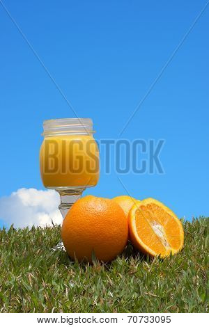 Oranges in the grass