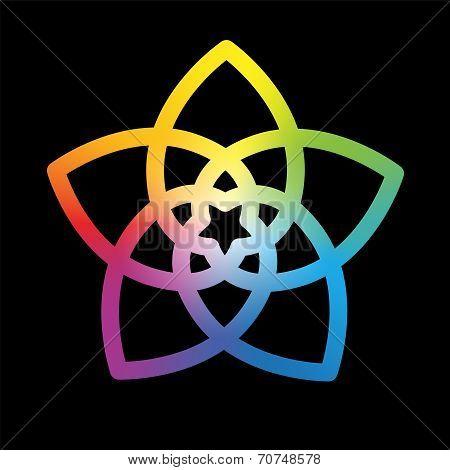 Flower of the Venus Rainbow Black
