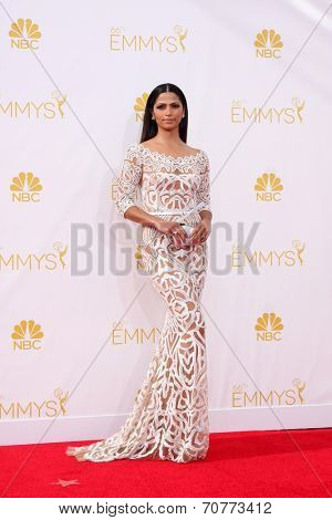 LOS ANGELES - AUG 25:  Camila Alves McConaughey at the 2014 Primetime Emmy Awards - Arrivals at Nokia Theater at LA Live on August 25, 2014 in Los Angeles, CA