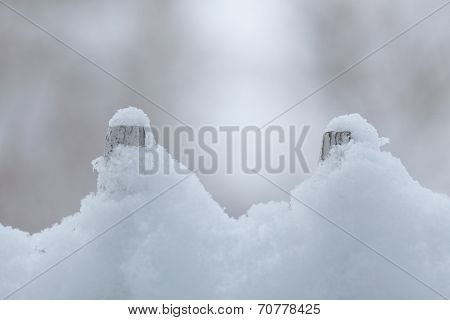 Old White Wooden Fence Covered With Snow. Winter Seasonal Specific.