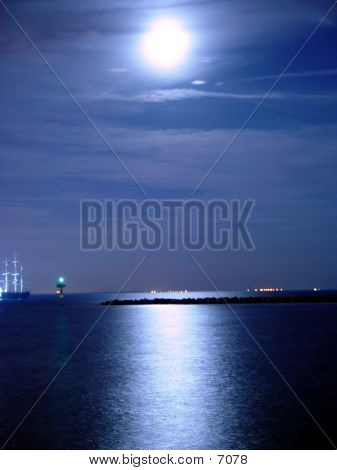 Moonlight On Tampa Bay