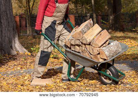 Borrow With Wood